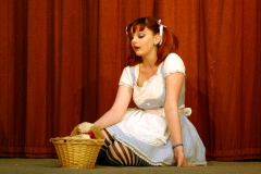 1001 Cinderella (2)